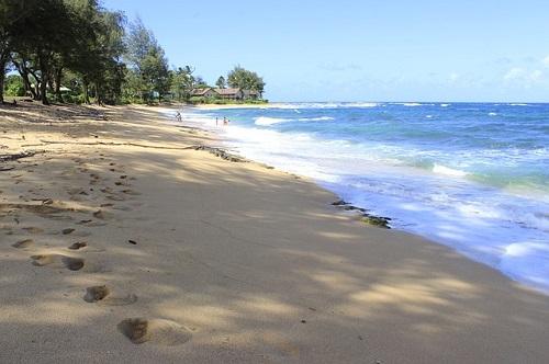 beach-276417_640